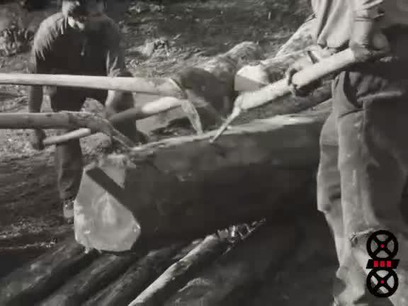 Descente de bois